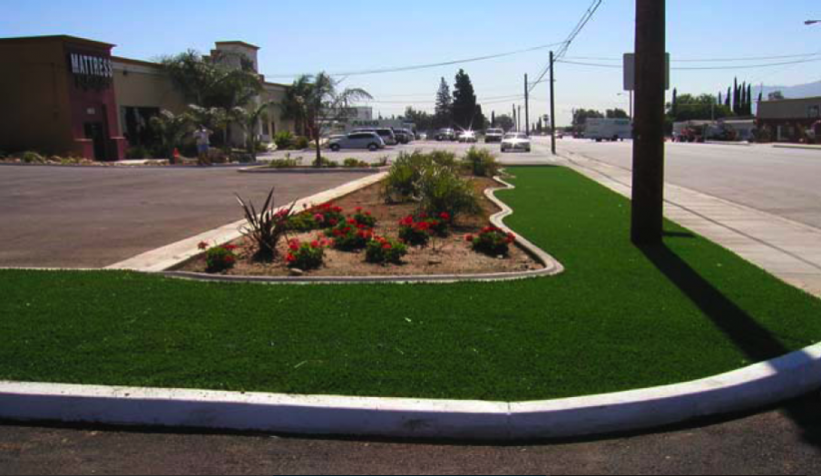 Bay Area Synthetic Lawn