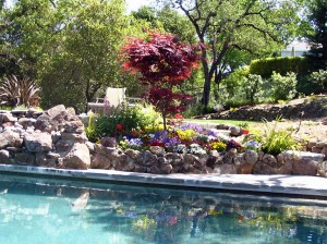 pool-landscaping-bay-area