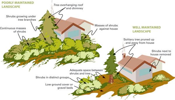 smart-landscaping