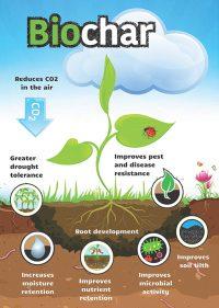 Biochar benefits